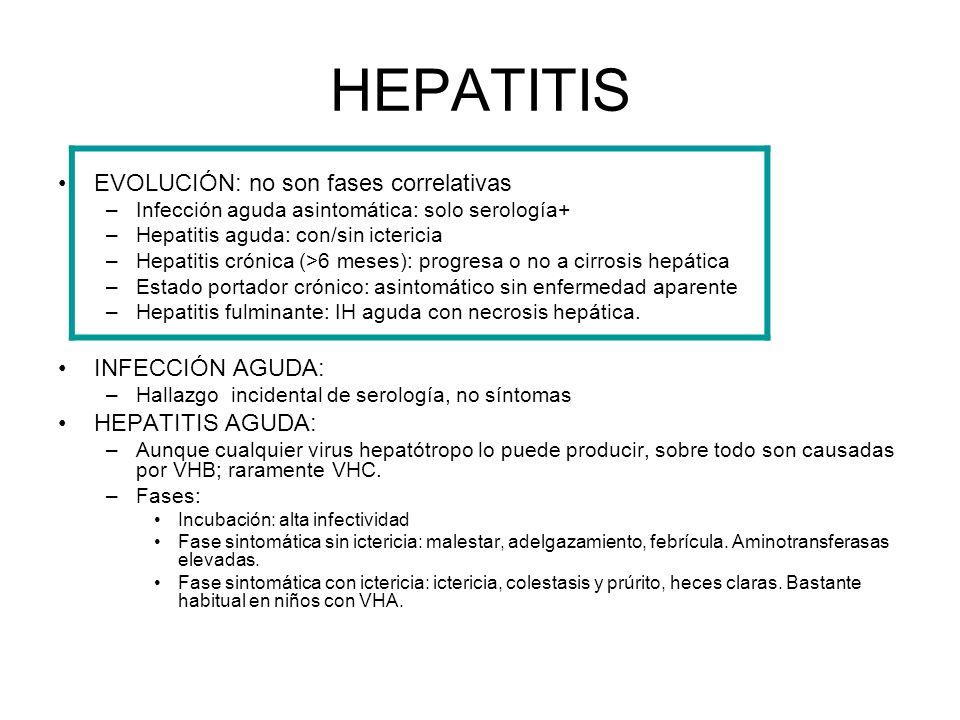 HEPATITIS EVOLUCIÓN: no son fases correlativas INFECCIÓN AGUDA: