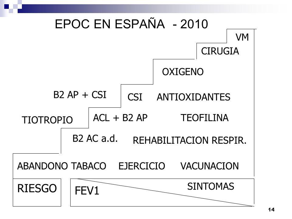 EPOC EN ESPAÑA - 2010 RIESGO FEV1 VM CIRUGIA OXIGENO B2 AP + CSI