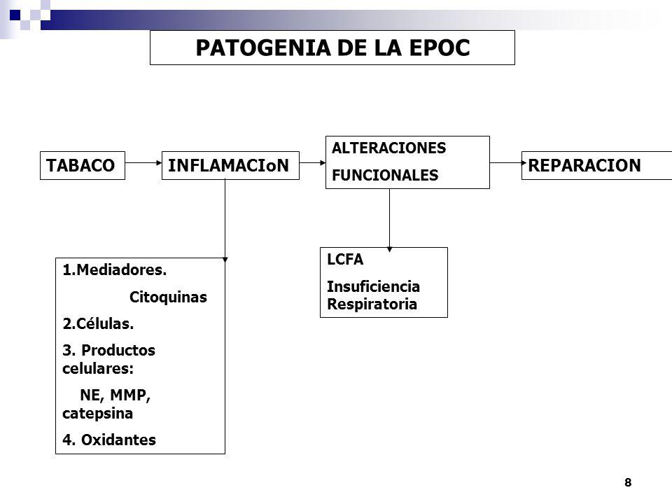 PATOGENIA DE LA EPOC TABACO INFLAMACIoN REPARACION ALTERACIONES