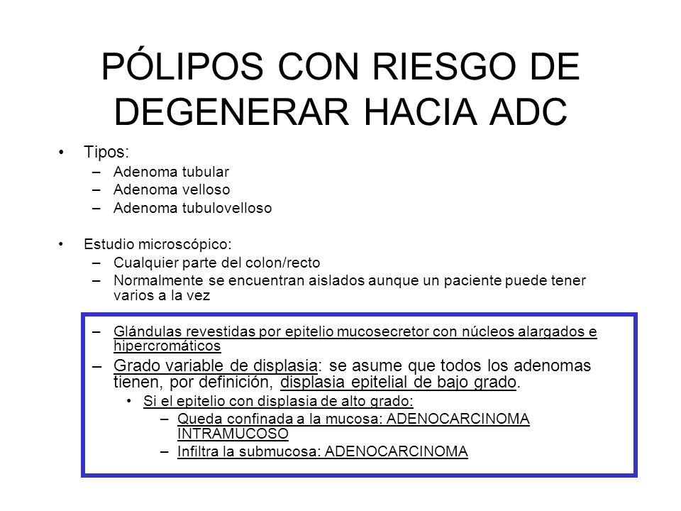 PÓLIPOS CON RIESGO DE DEGENERAR HACIA ADC