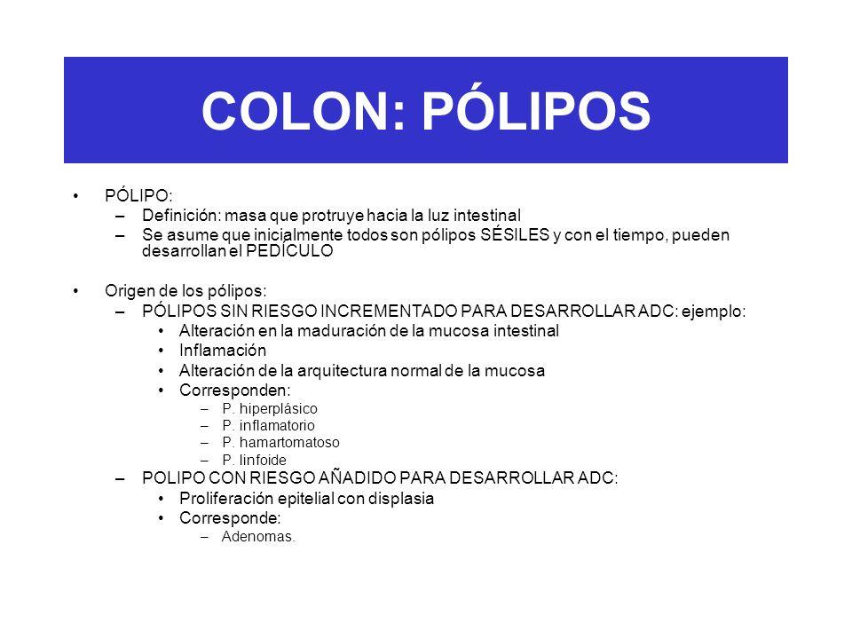 COLON: PÓLIPOS PÓLIPO: