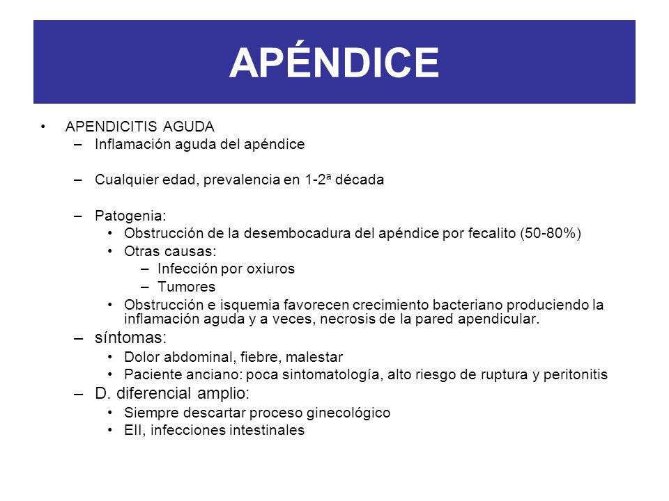 APÉNDICE síntomas: D. diferencial amplio: APENDICITIS AGUDA