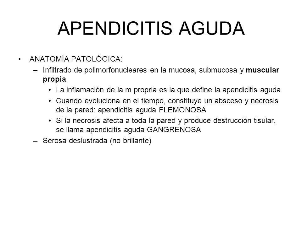 APENDICITIS AGUDA ANATOMÍA PATOLÓGICA: