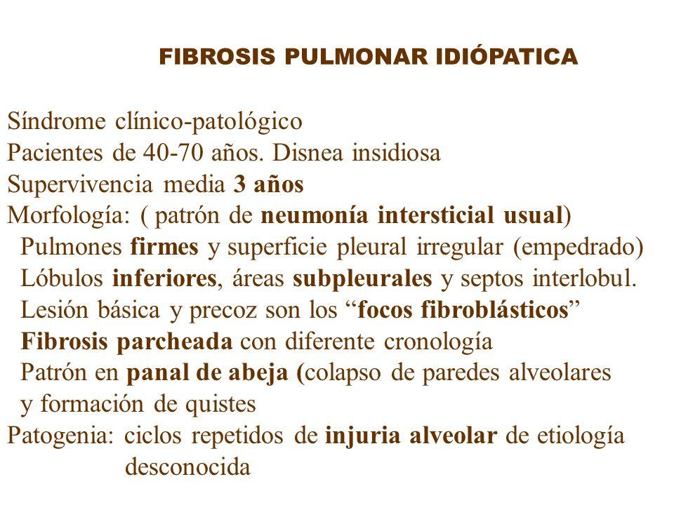Síndrome clínico-patológico Pacientes de 40-70 años. Disnea insidiosa