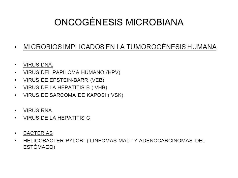 ONCOGÉNESIS MICROBIANA