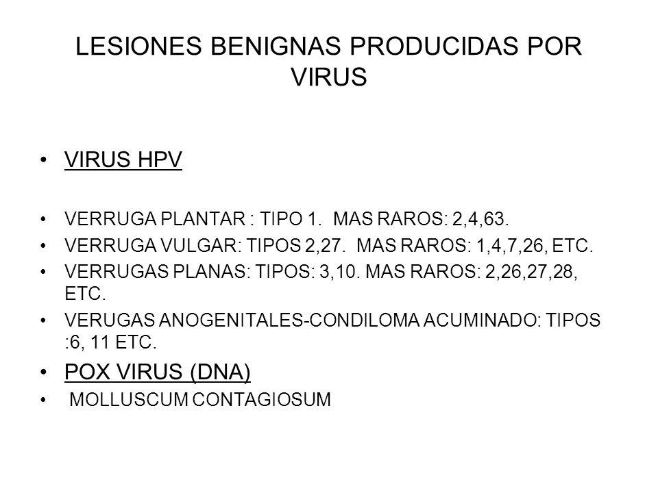 LESIONES BENIGNAS PRODUCIDAS POR VIRUS
