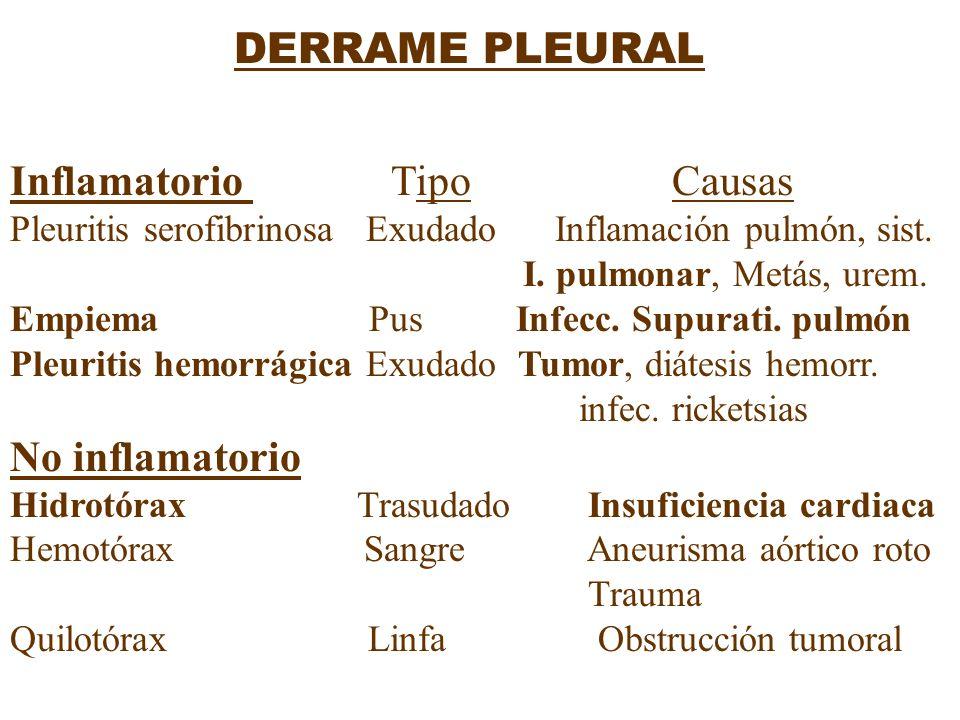 Inflamatorio Tipo Causas