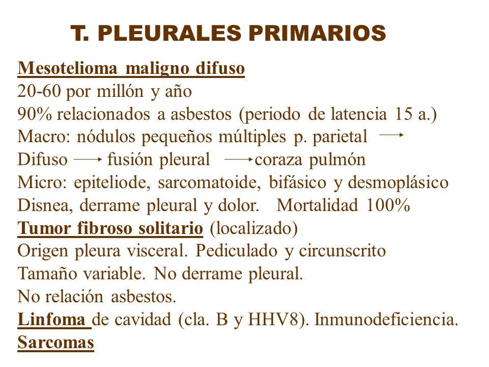 T. PLEURALES PRIMARIOS Mesotelioma maligno difuso