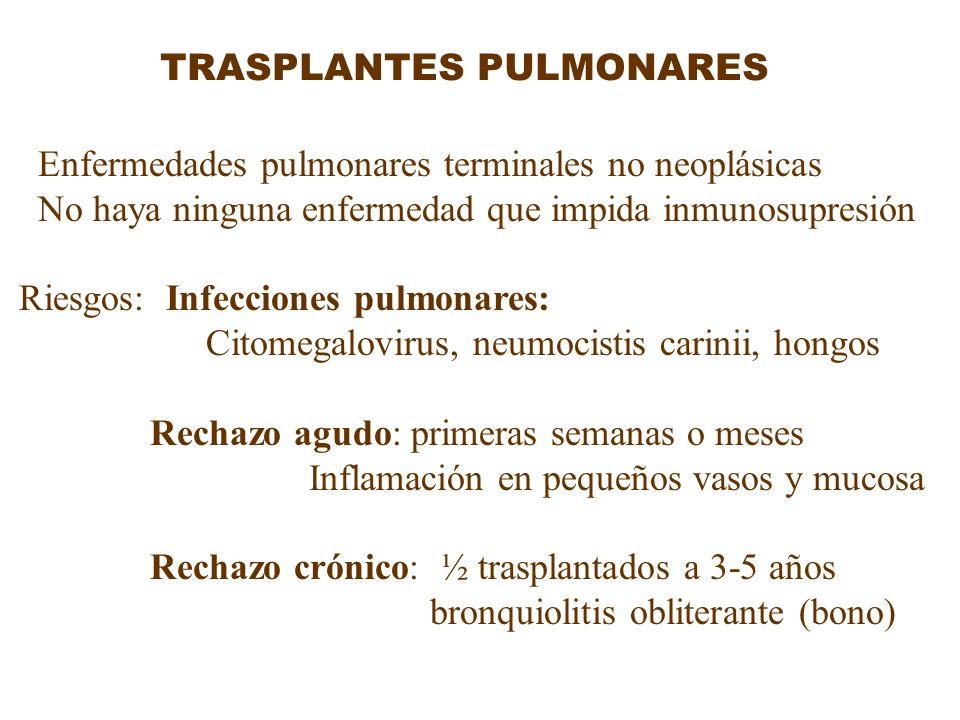 TRASPLANTES PULMONARES