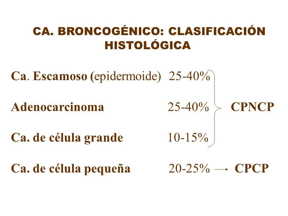 CA. BRONCOGÉNICO: CLASIFICACIÓN HISTOLÓGICA
