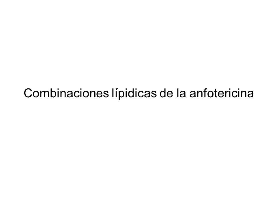 Combinaciones lípidicas de la anfotericina