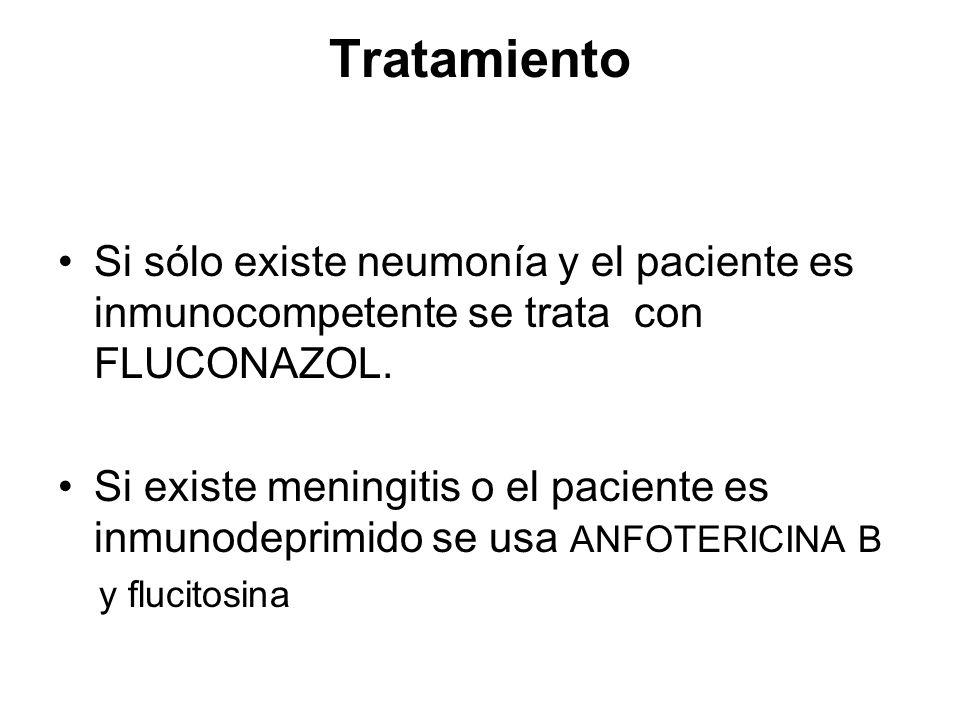 Tratamiento Si sólo existe neumonía y el paciente es inmunocompetente se trata con FLUCONAZOL.