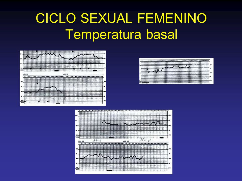 CICLO SEXUAL FEMENINO Temperatura basal