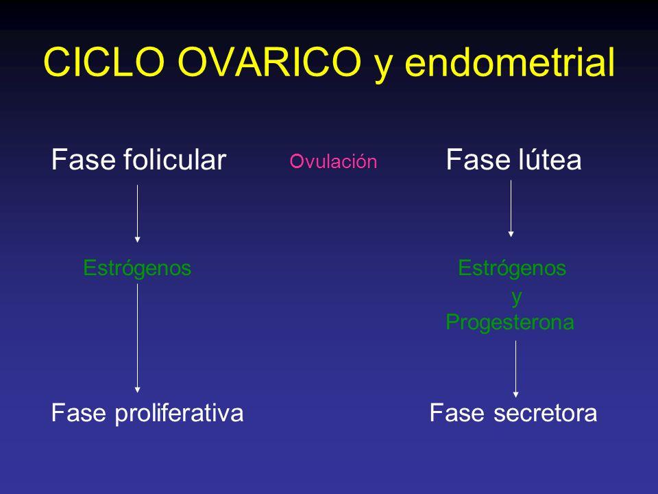 CICLO OVARICO y endometrial