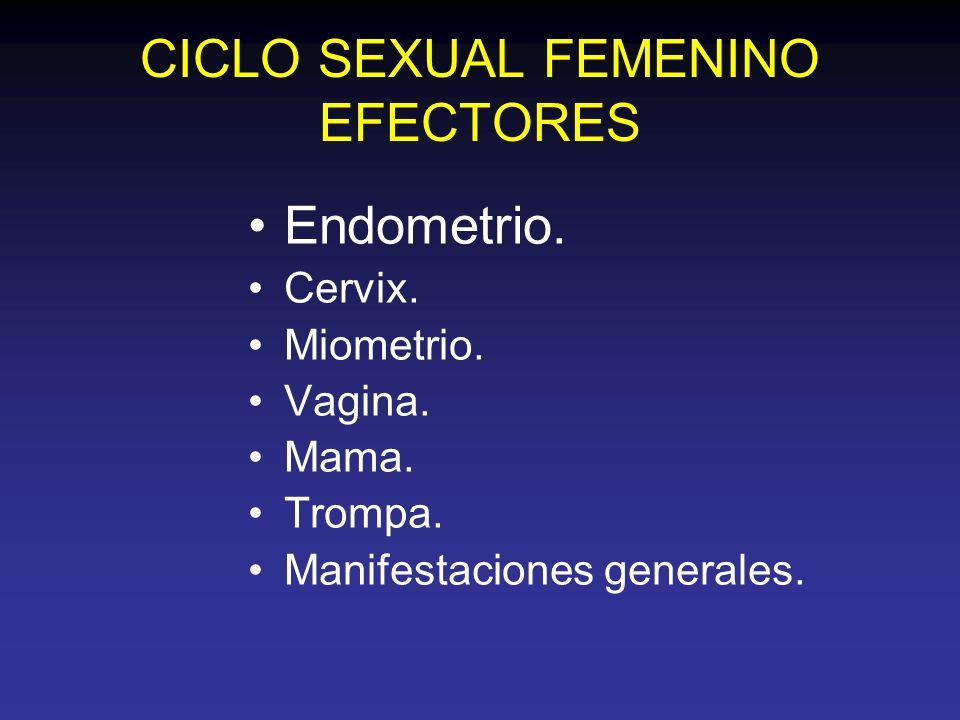 CICLO SEXUAL FEMENINO EFECTORES