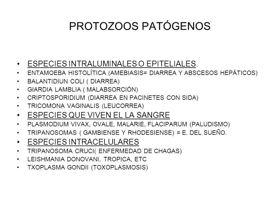 PROTOZOOS PATÓGENOS ESPECIES INTRALUMINALES O EPITELIALES.