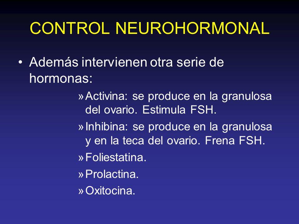 CONTROL NEUROHORMONAL