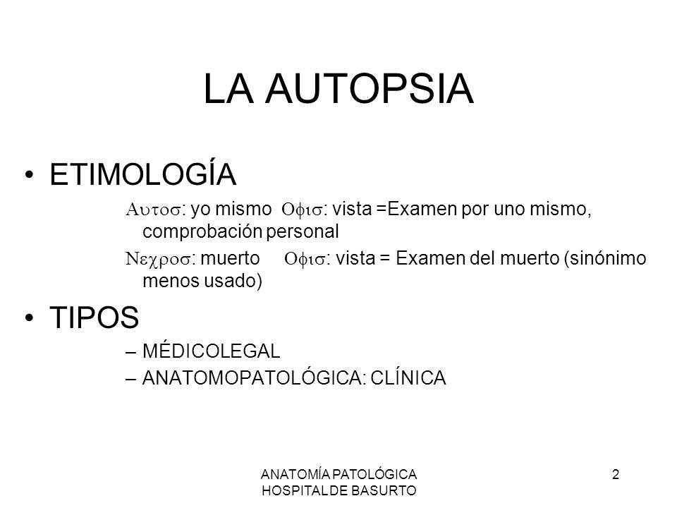Lujo Anatomía Consejos Prácticos De Examen Modelo - Anatomía de Las ...