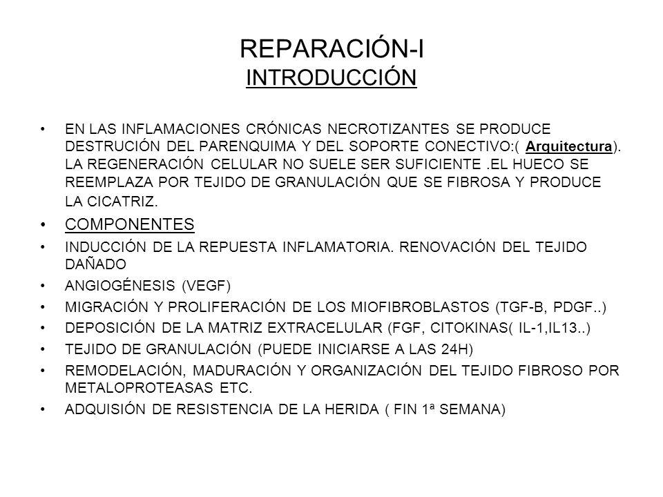REPARACIÓN-I INTRODUCCIÓN