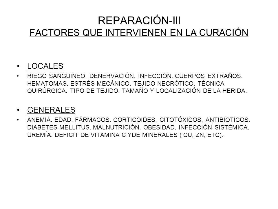 REPARACIÓN-III FACTORES QUE INTERVIENEN EN LA CURACIÓN