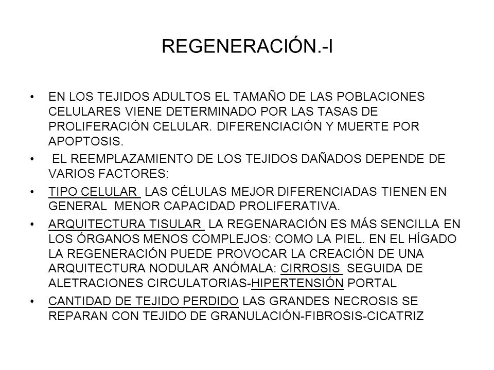 REGENERACIÓN.-I
