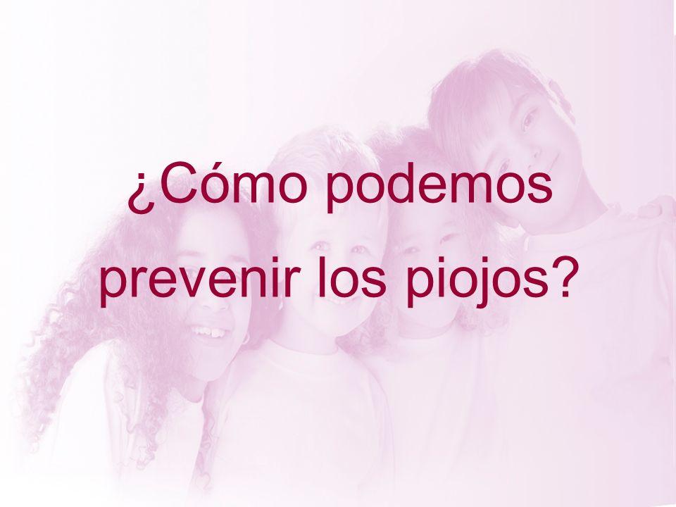 ¿Cómo podemos prevenir los piojos