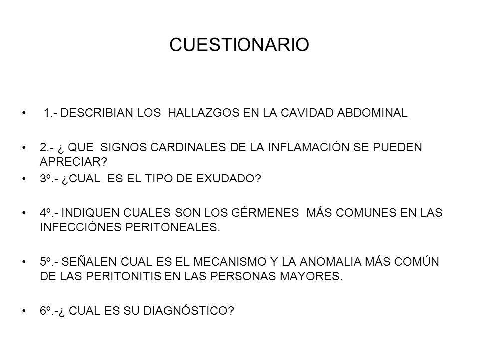 CUESTIONARIO 1.- DESCRIBIAN LOS HALLAZGOS EN LA CAVIDAD ABDOMINAL