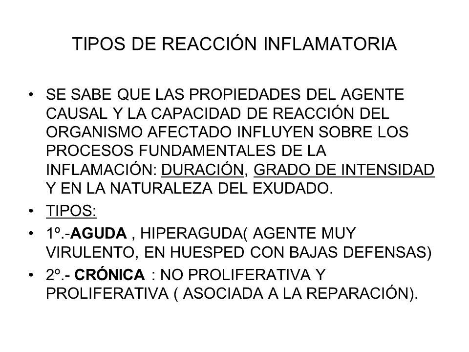 TIPOS DE REACCIÓN INFLAMATORIA