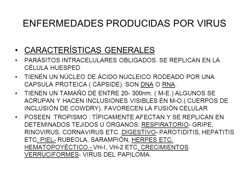 ENFERMEDADES PRODUCIDAS POR VIRUS