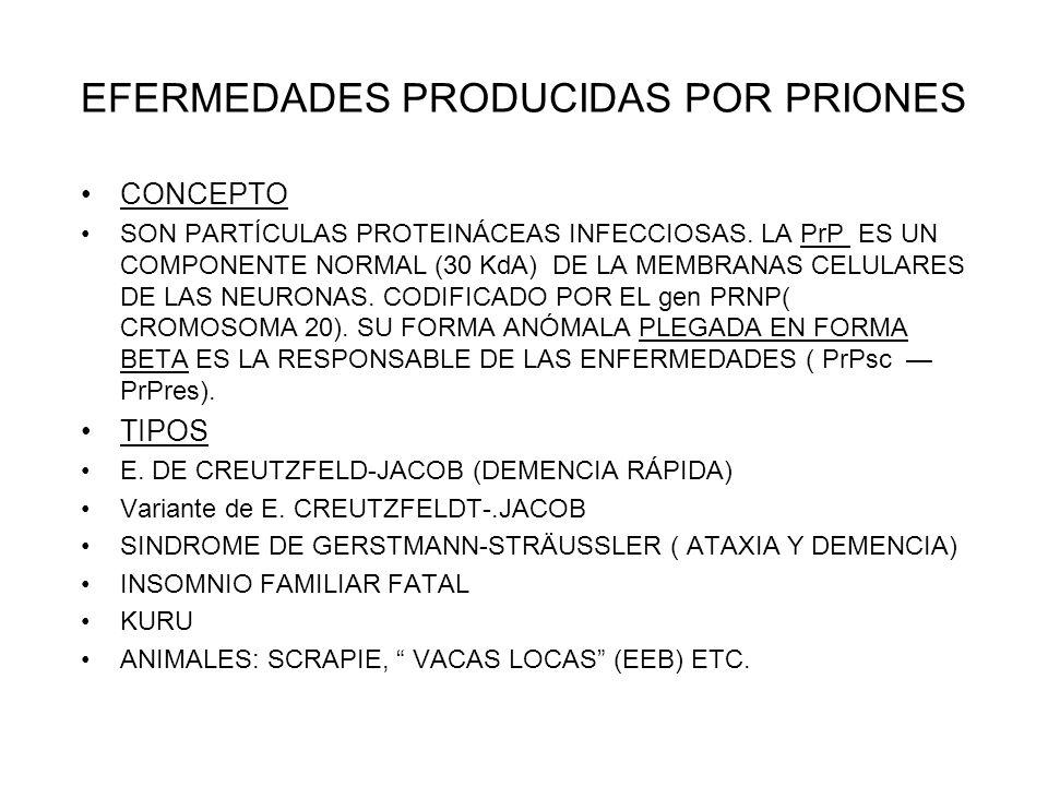 EFERMEDADES PRODUCIDAS POR PRIONES