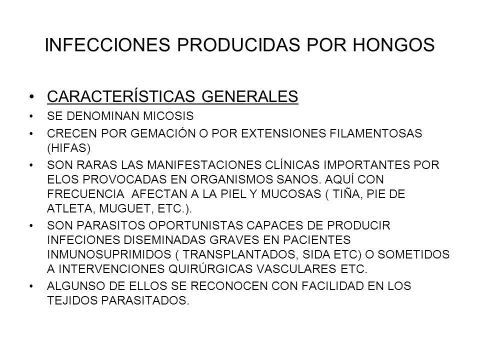 INFECCIONES PRODUCIDAS POR HONGOS
