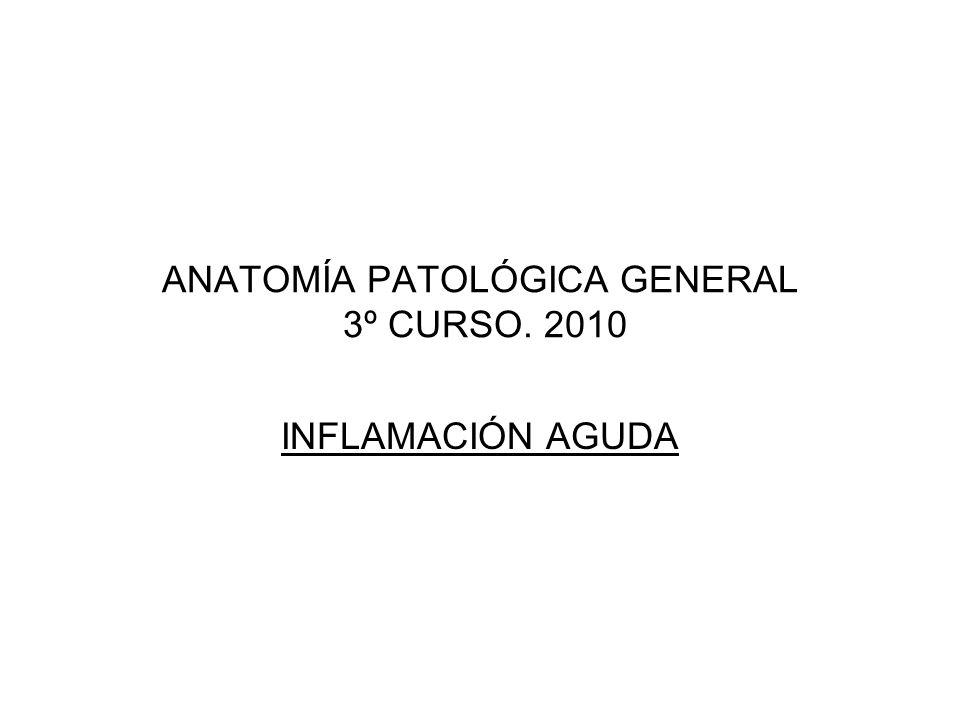 ANATOMÍA PATOLÓGICA GENERAL 3º CURSO. 2010