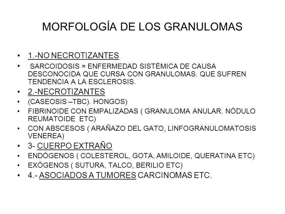 MORFOLOGÍA DE LOS GRANULOMAS