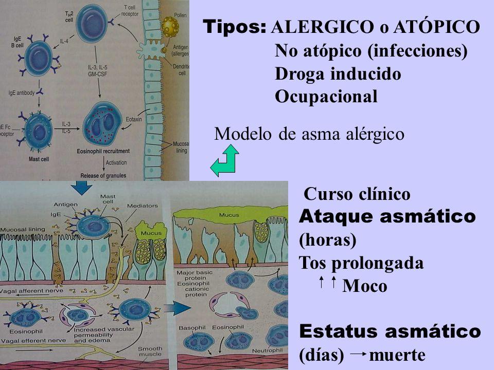 Tipos: ALERGICO o ATÓPICO No atópico (infecciones) Droga inducido