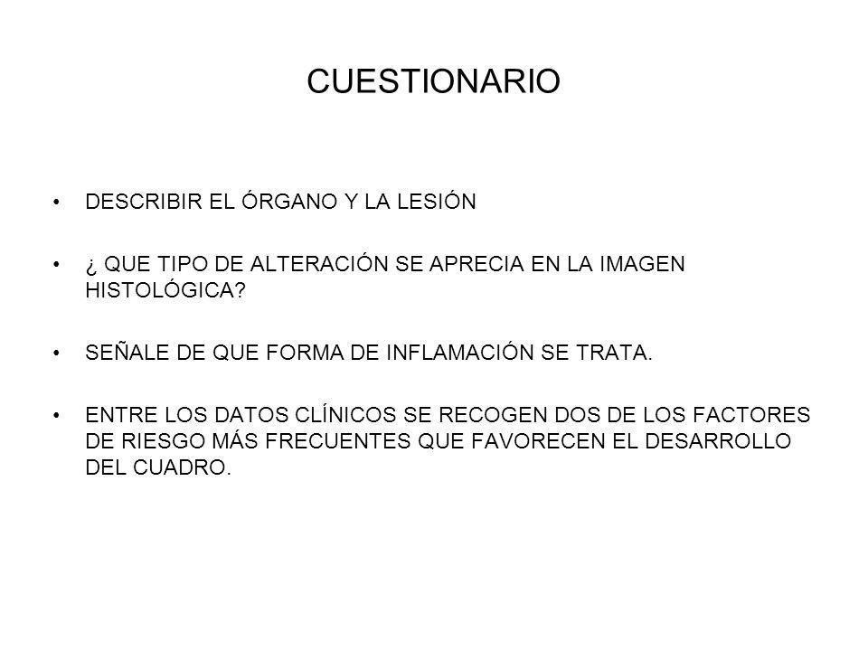 CUESTIONARIO DESCRIBIR EL ÓRGANO Y LA LESIÓN