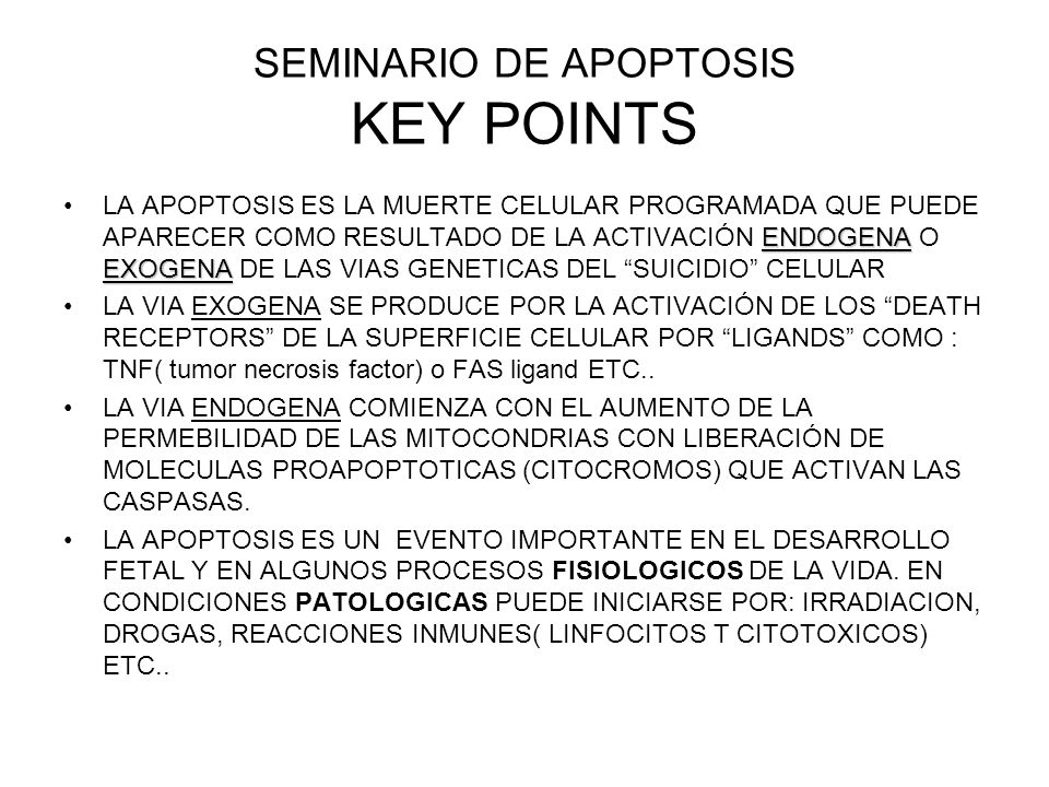 SEMINARIO DE APOPTOSIS KEY POINTS