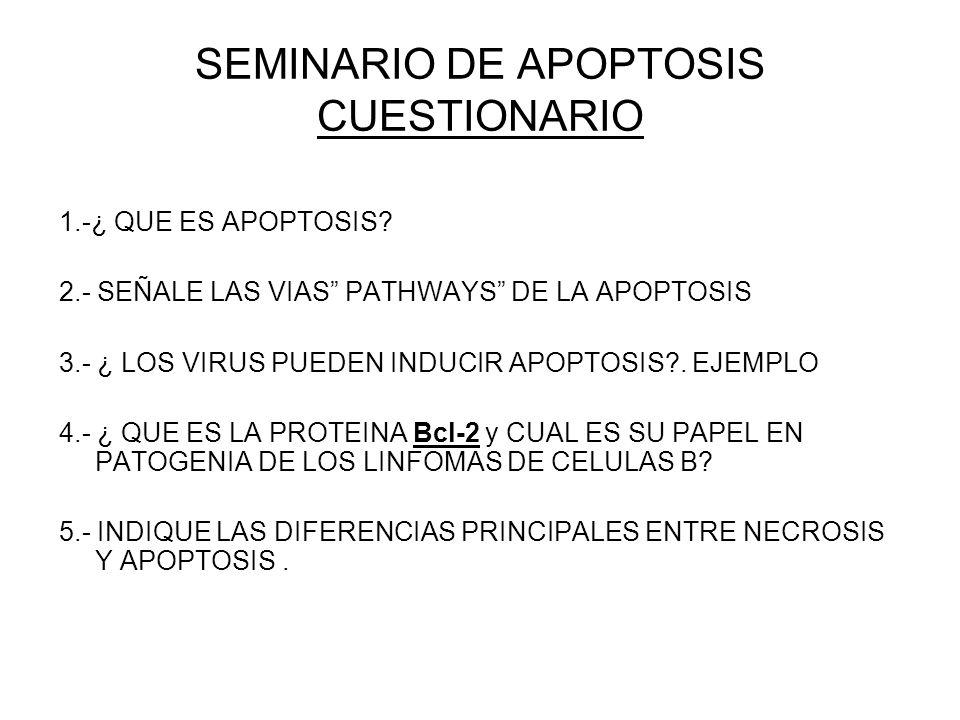 SEMINARIO DE APOPTOSIS CUESTIONARIO