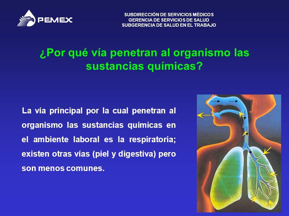 ¿Por qué vía penetran al organismo las sustancias químicas