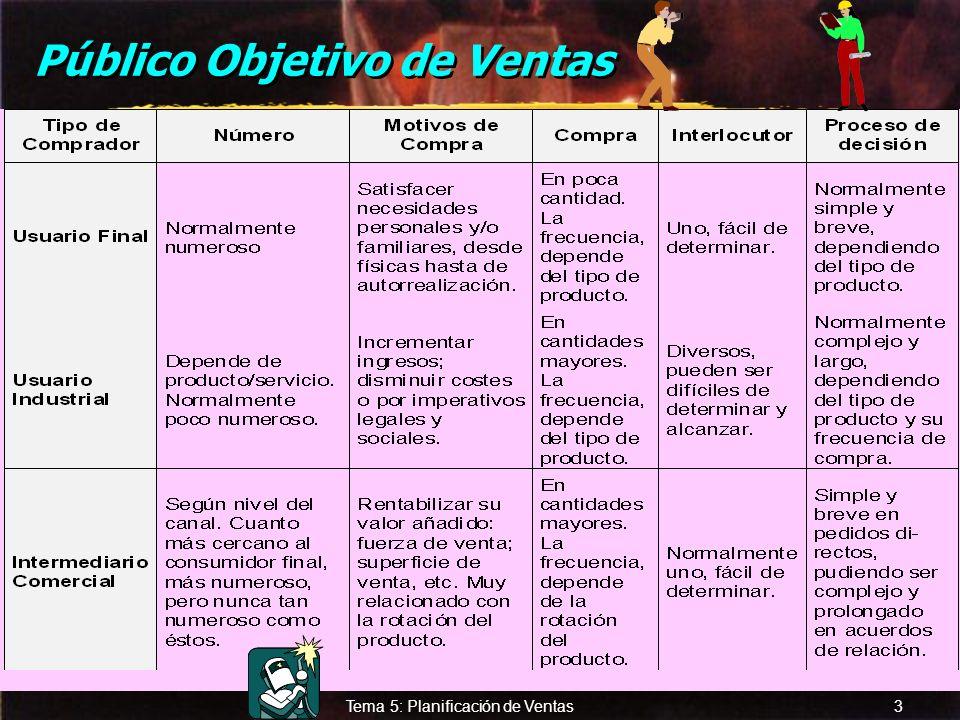 Público Objetivo de Ventas