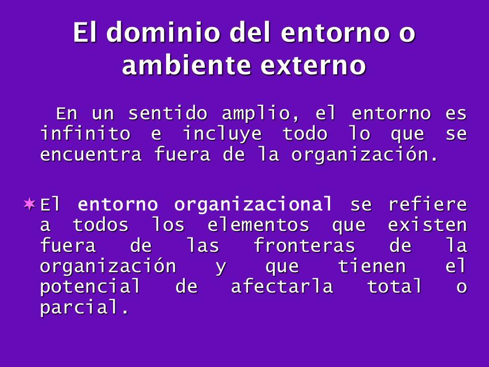 El dominio del entorno o ambiente externo
