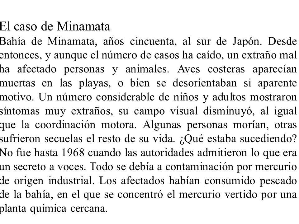 El caso de Minamata