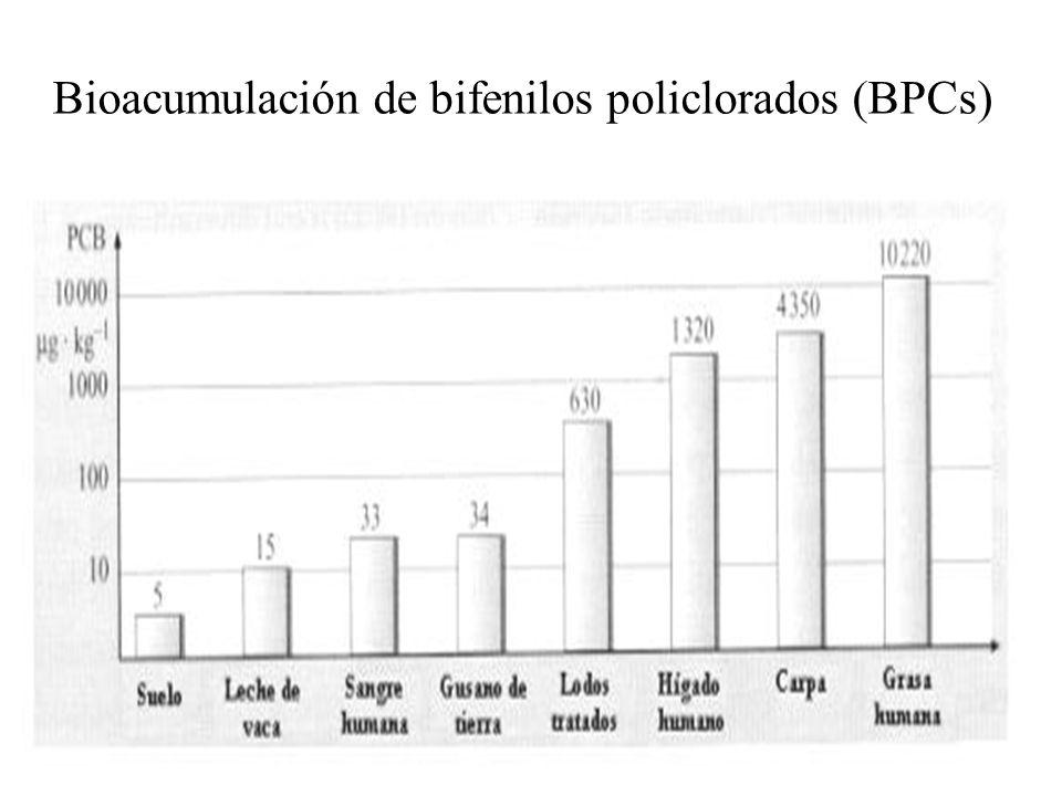 Bioacumulación de bifenilos policlorados (BPCs)