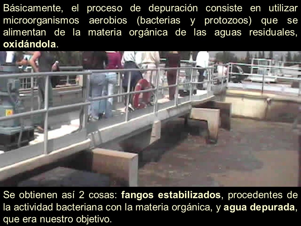 Básicamente, el proceso de depuración consiste en utilizar microorganismos aerobios (bacterias y protozoos) que se alimentan de la materia orgánica de las aguas residuales, oxidándola.