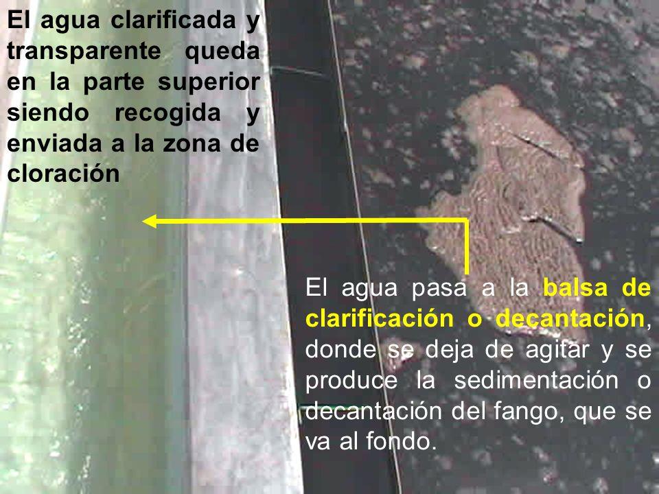 El agua clarificada y transparente queda en la parte superior siendo recogida y enviada a la zona de cloración