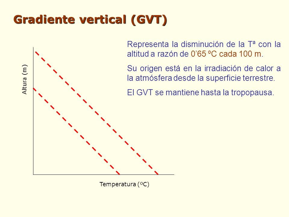 Gradiente vertical (GVT)