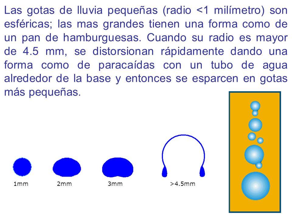 Las gotas de lluvia pequeñas (radio <1 milímetro) son esféricas; las mas grandes tienen una forma como de un pan de hamburguesas. Cuando su radio es mayor de 4.5 mm, se distorsionan rápidamente dando una forma como de paracaídas con un tubo de agua alrededor de la base y entonces se esparcen en gotas más pequeñas.
