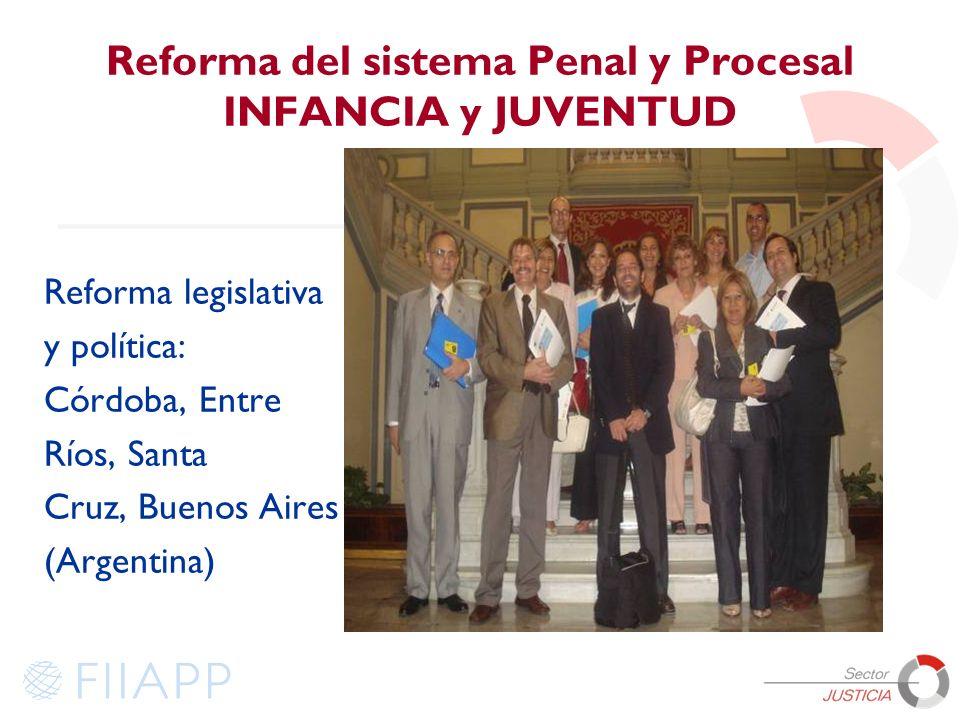 Reforma del sistema Penal y Procesal INFANCIA y JUVENTUD