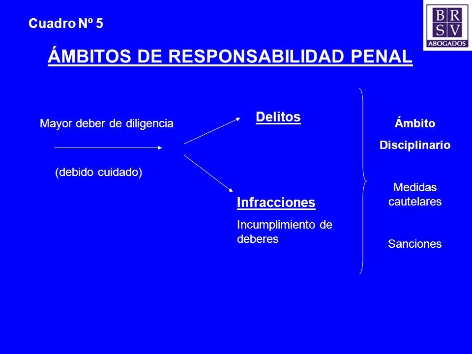 ÁMBITOS DE RESPONSABILIDAD PENAL