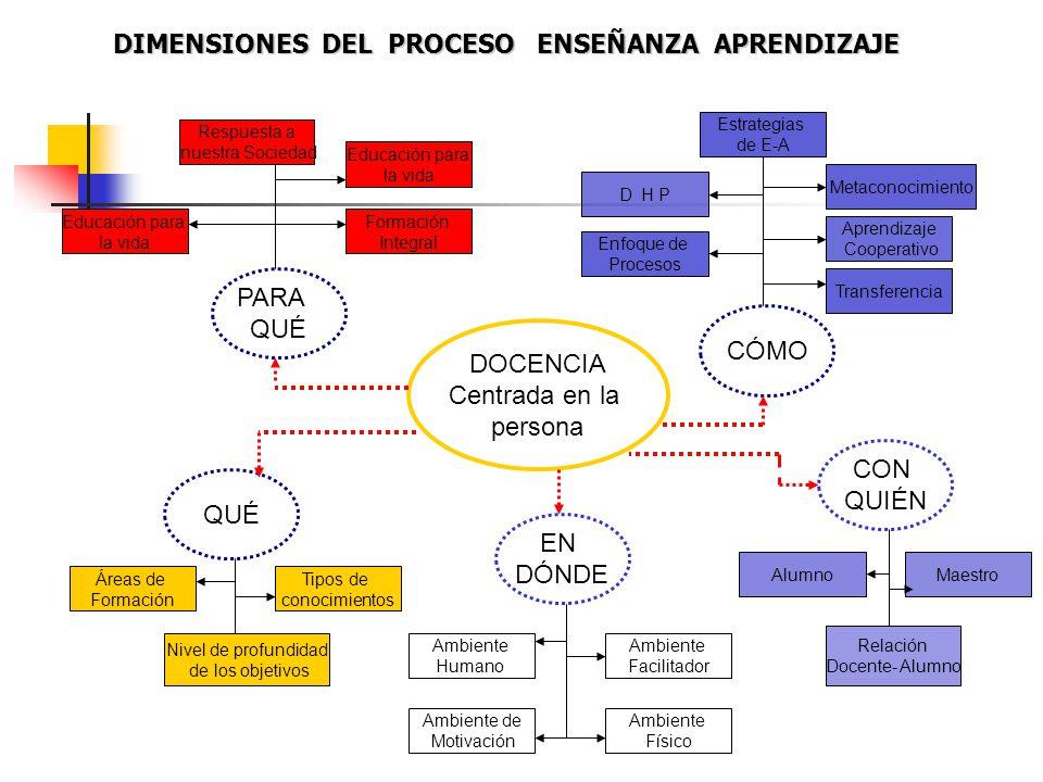DIMENSIONES DEL PROCESO ENSEÑANZA APRENDIZAJE