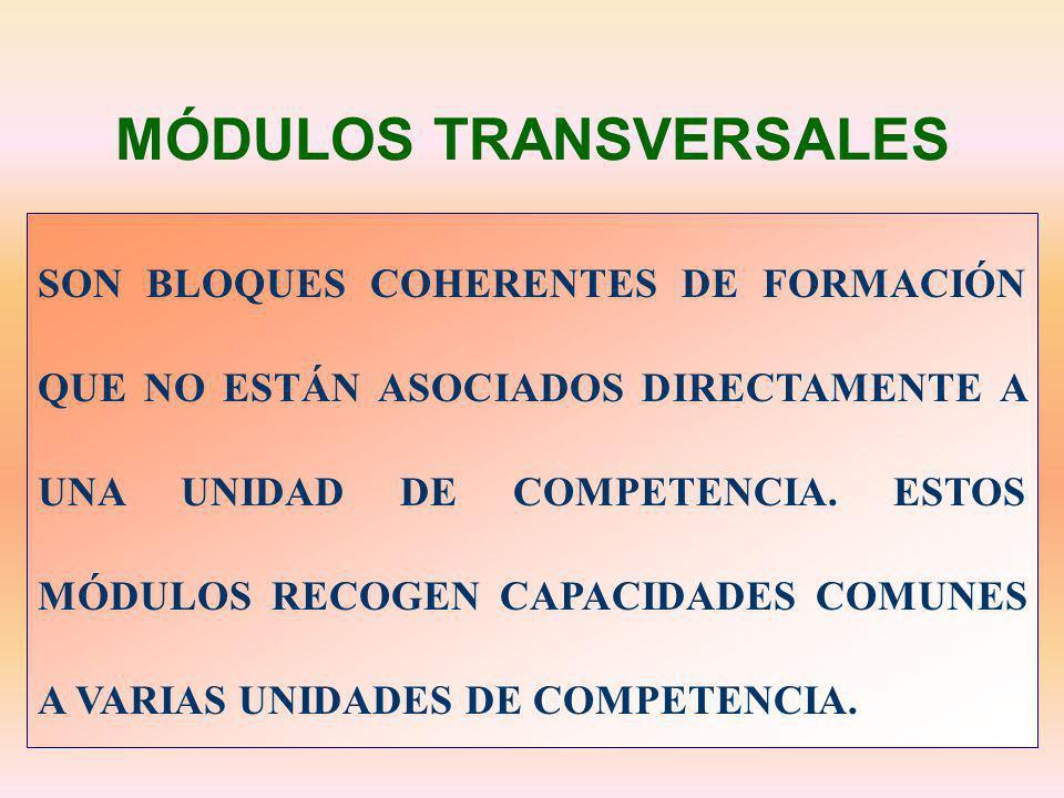 MÓDULOS TRANSVERSALES